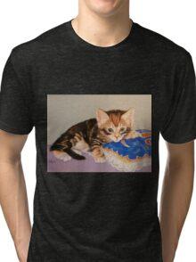 Narnia Tri-blend T-Shirt