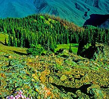 VIEW,OBSTRUCTION POINT by Chuck Wickham
