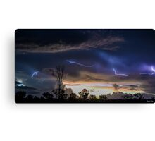 Acacia Electrical Storm Canvas Print