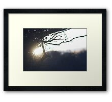 Glowing Framed Print