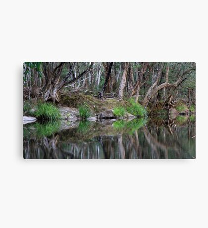 Reflections of Promised Land Canvas Print