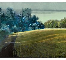 Long Shadows Parklands by David  Kennett