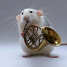 Moppy and his french horn by Ellen van Deelen