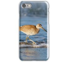 Willet in the Waves iPhone Case/Skin