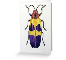 Chrysochroa buqueti Beetle Greeting Card