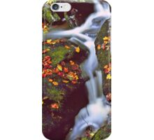 CASCADE,AUTUMN iPhone Case/Skin