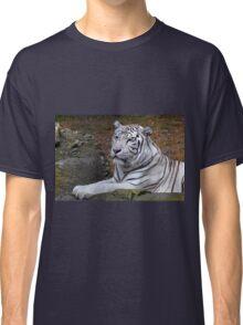 Tiger at rest Classic T-Shirt