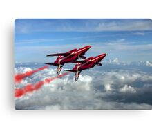 Synchro Pair Canvas Print