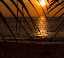 Sunset on the sea Sticker