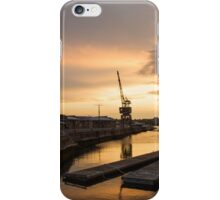 Retired Cranes iPhone Case/Skin