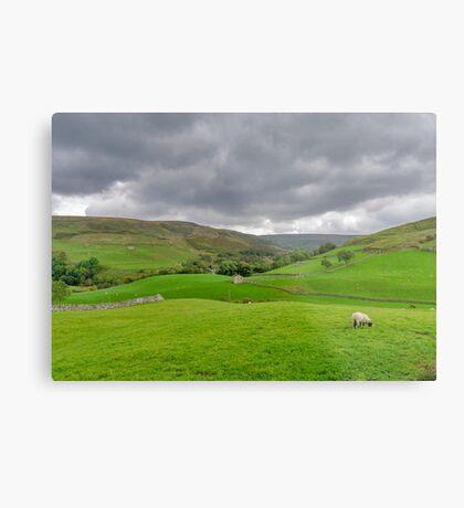 Yorkshire Dales View Metal Print
