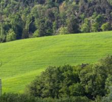 hilly landscape Sticker