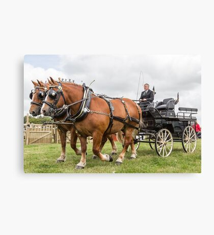 Heavy Horses Canvas Print