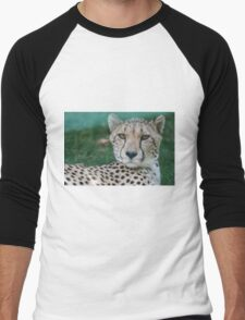 leopard at the zoo Men's Baseball ¾ T-Shirt