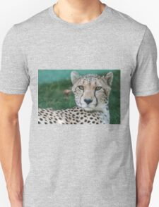leopard at the zoo T-Shirt