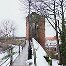 City Walls & King Charles' Tower, Chester, UK by AnnDixon