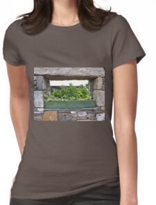 Window Box In Stone Womens Fitted T-Shirt
