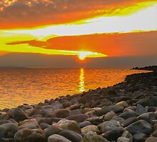Evening Sun by WillBov