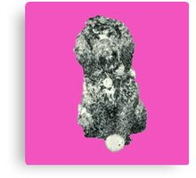 Cockapoo with a ball (Pink) Canvas Print