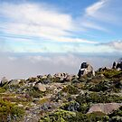 Mount Wellington Summit - Tasmania - Australia by Jessica Fittock