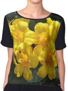 Yellow Rhododendron Chiffon Top