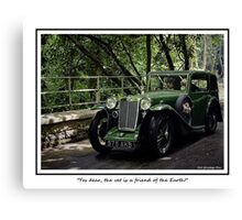 """Yes dear, the vet is a friend of the Earth!"" Canvas Print"