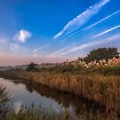 Hersey Nature Reserve by manateevoyager