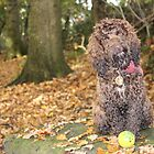 Cockapoo with Autumn Leaves in Woods by LearsInteriors