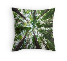 Looking Up At Trees Throw Pillow