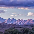 Wilpena Range And The Hills Of Arkaba  by Mike Arnott