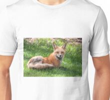 Momma fox looking at me Unisex T-Shirt