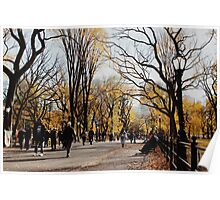 Central Park - Fall Tinted Poster