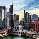 Chicago River by Tammy Wetzel