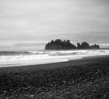 Sea Stack off First Beach.  by Jennifer Bishop