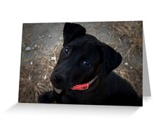 What a Pup! Greeting Card