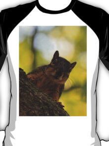 She's back again Bob...get ready to toss acorns! T-Shirt