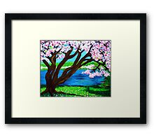 Cherry Blossoms 3 Framed Print