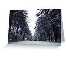 Peace & Quiet. Greeting Card