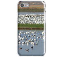 Crowded! iPhone Case/Skin