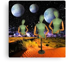 3 of a Kind Canvas Print