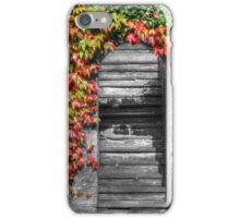 Stairway with autumn leaves iPhone Case/Skin