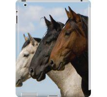 Three Stallions iPad Case/Skin