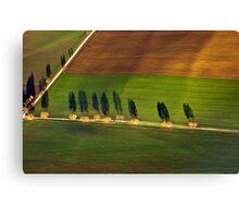 Autumn Shadows, Bavaria Canvas Print