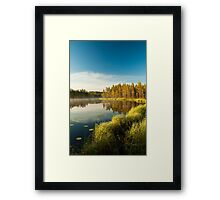 Morning at forest lake Framed Print