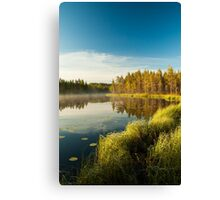 Morning at forest lake Canvas Print