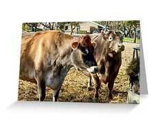 Cows That Are Udderly Adorable. Greeting Card