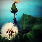 On a windy day by iamelmana