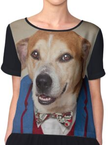 Shelter Pets Project - Choppers Chiffon Top