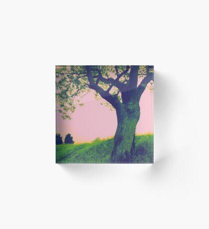 Energy Tree Acrylic Block