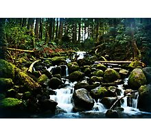 Wallace Falls Trail Photographic Print